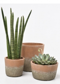 Кашпо из терракоты  Indoor Pots Collection Burgon & Ball  картинка 2